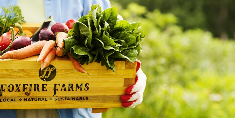 Purchase your fresh groceries online straight from the farm. Foxfire Farms: Local. Natural. Sustainable.